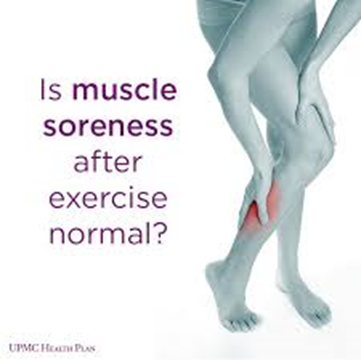 Sore muscles after Exercises
