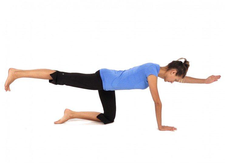 Kneeling Arm and Leg Reach Exercises